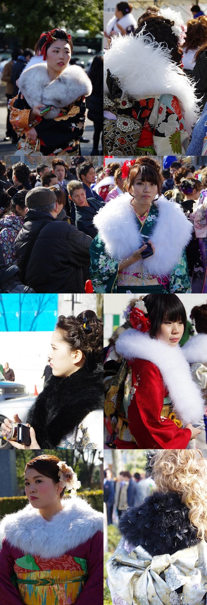 WP_seijin_2015_5