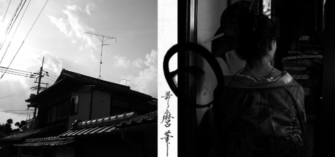 WP_yumi1