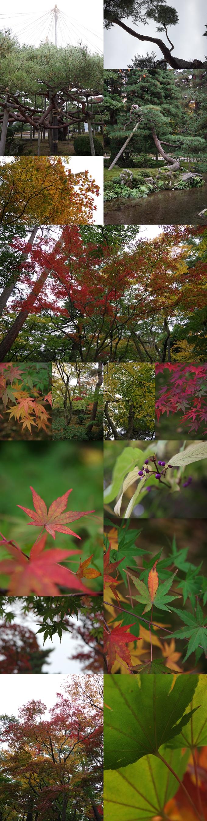 WP_kanazawa_3